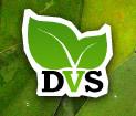 Daintree Vanilla and Spice