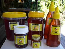 Kuranda Honey
