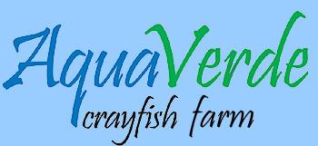aquaverde20logowebtext20copy